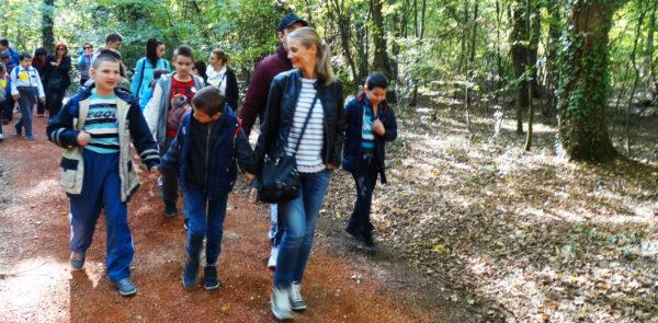 Једнодневни излет у Бојчинској шуми